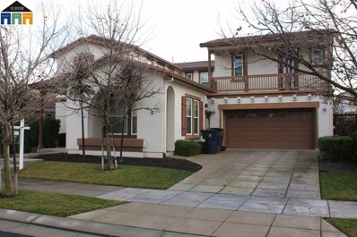 732 S Tradition St, Mountain House, CA 95391 - MLS#: 40822414