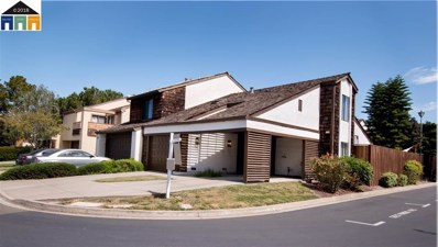 34951 Belvedere Terrace, Fremont, CA 94555 - MLS#: 40822757