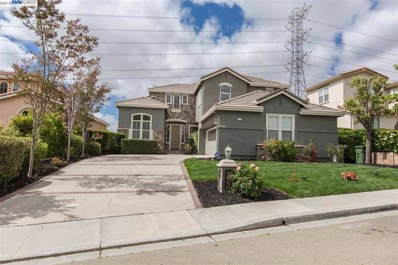 111 Meadows Ct, Fremont, CA 94539 - MLS#: 40824421