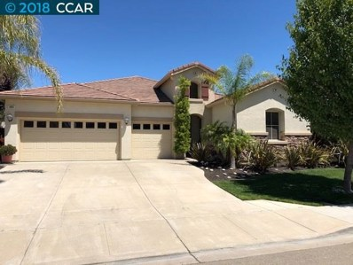 4884 Snowy Egret Way, Oakley, CA 94561 - MLS#: 40825132