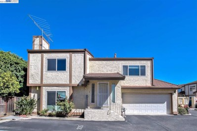 335 Giovanni Ct, San Jose, CA 95133 - MLS#: 40825797