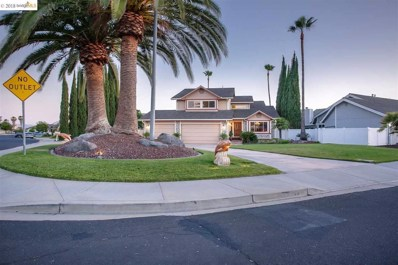 1707 Dolphin Pl, Discovery Bay, CA 94505 - MLS#: 40826536