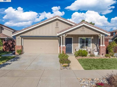 1243 Echo Summit St, Livermore, CA 94551 - MLS#: 40827053