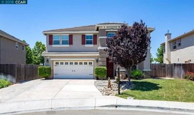 61 Sandhill Crane Ct, Oakley, CA 94561 - MLS#: 40827134