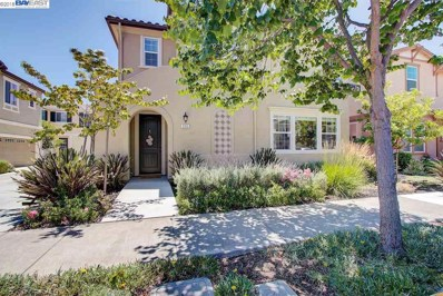 336 Pacifica Dr, Brentwood, CA 94513 - MLS#: 40829005
