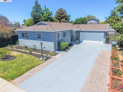 6223 Castillon Dr, Newark, CA 94560 - MLS#: 40829981