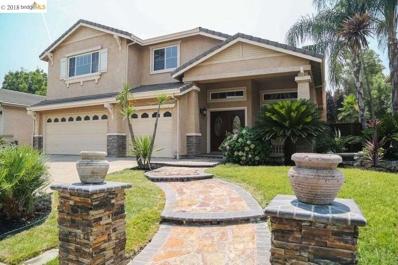 1410 Leaning Oak Dr, Brentwood, CA 94513 - MLS#: 40831009