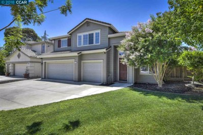 1333 Downie Point Dr, Brentwood, CA 94513 - MLS#: 40831622