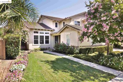 1003 Meadow Brook Dr, Brentwood, CA 94513 - MLS#: 40832351