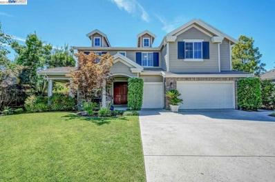 387 Mullin Ct, Pleasanton, CA 94566 - MLS#: 40832863