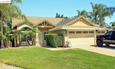 4135 Chicory Ct, Oakley, CA 94561 - MLS#: 40833282