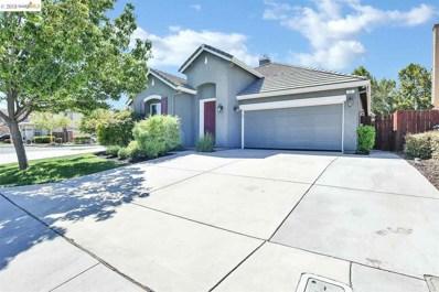 11 Sandhill Crane Ct, Oakley, CA 94561 - MLS#: 40836501