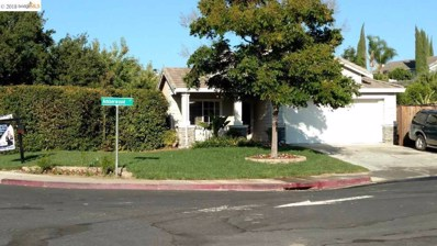 1028 Amberwood Ct, Antioch, CA 94531 - MLS#: 40836549