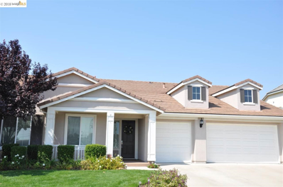 16 Privet Ct., Oakley, CA 94561 - MLS#: 40836757