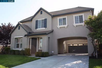 14 Solitude Ct, Oakley, CA 94561 - MLS#: 40837027
