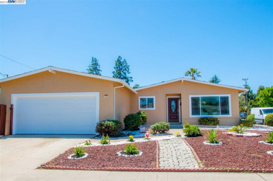 6303 Plummer Ave, Newark, CA 94560 - MLS#: 40837161