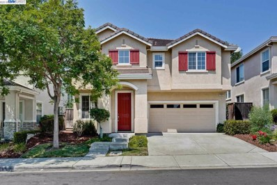 133 Elderberry Ln, Union City, CA 94587 - MLS#: 40837415