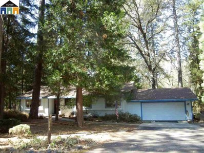 16004 Langley Pl, Grass Valley, CA 95949 - MLS#: 40839062