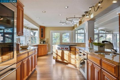29 Canyon View Dr, Orinda, CA 94563 - #: 40840491