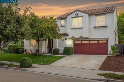 5408 Truskmore Way, Antioch, CA 94531 - MLS#: 40841561