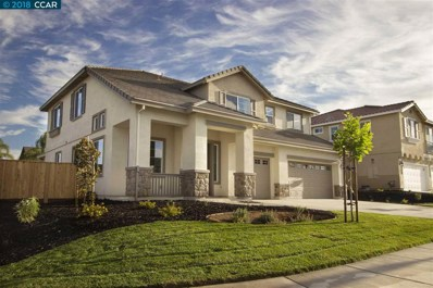 422 Pinenut Street, Oakley, CA 94561 - MLS#: 40843040