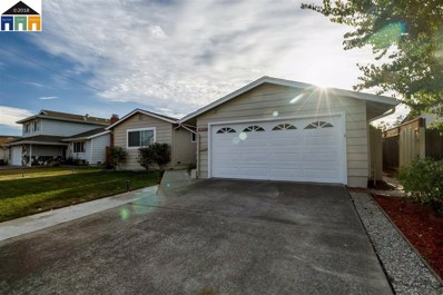 48233 Conifer St, Fremont, CA 94539 - MLS#: 40843797