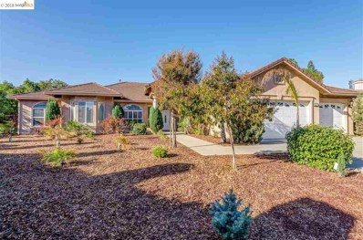 204 Chaps Court, Oakley, CA 94561 - MLS#: 40843856