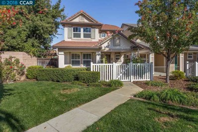 101 Spruce St, Brentwood, CA 94513 - MLS#: 40844758
