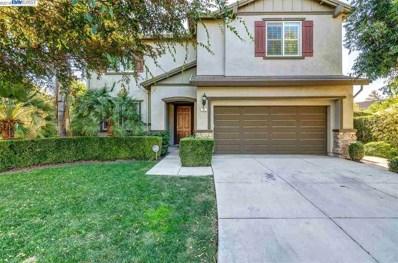 41 Mandrake Ct, Oakley, CA 94561 - MLS#: 40845421