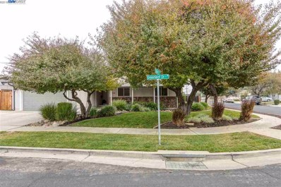 734 Greenleaf Dr, Brentwood, CA 94513 - MLS#: 40846470