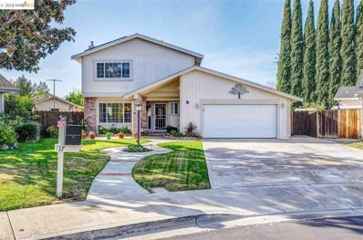 17 Nottingham Ct, Brentwood, CA 94513 - MLS#: 40847346