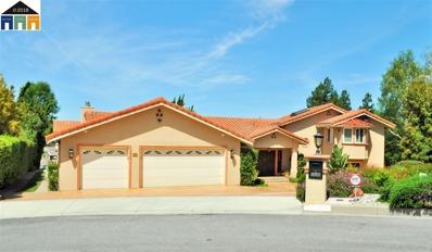 46925 Aloe Ct., Fremont, CA 94539 - #: 40847625