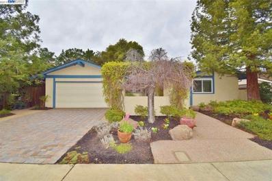 1133 Geneva St, Livermore, CA 94550 - MLS#: 40853164