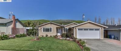 48224 Arcadian Street, Fremont, CA 94539 - MLS#: 40857785