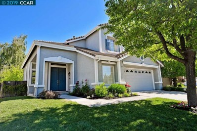 328 Squirrel Ridge Way, Danville, CA 94506 - MLS#: 40869770