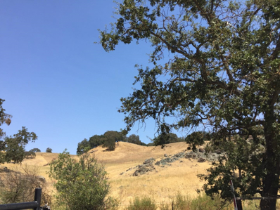 1 Little Uvas Road, Morgan Hill, CA 95037 - MLS#: 52021083