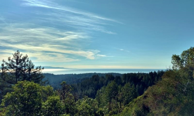 4445 Trout Gulch Road, Aptos, CA 95003 - MLS#: 52141618