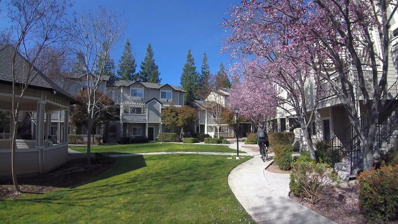 5439 Sanchez Drive, San Jose, CA 95123 - MLS#: 52155100