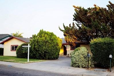 1151 Skyview Drive, Oakdale, CA 95361 - MLS#: 52159345
