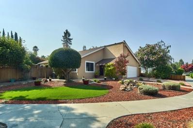 313 Oakberry Way, San Jose, CA 95123 - MLS#: 52161806