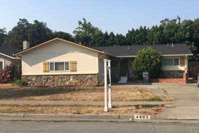 4603 Borina Drive, San Jose, CA 95129 - MLS#: 52162029
