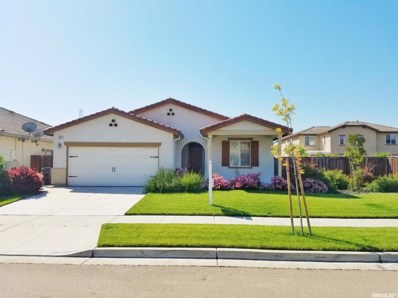 548 Homestead Avenue, Lathrop, CA 95330 - MLS#: 52168543