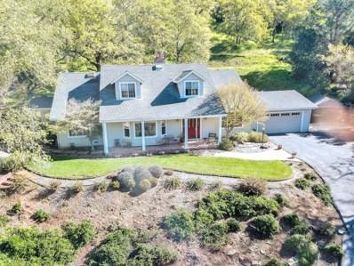 13800 Sycamore Drive, Morgan Hill, CA 95037 - MLS#: 52181473