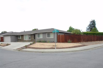 2647 Birchtree Lane, Santa Clara, CA 95051 - #: 52200339