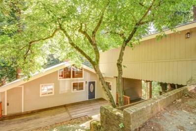 14615 Big Basin Way, Boulder Creek, CA 95006 - #: 52202650