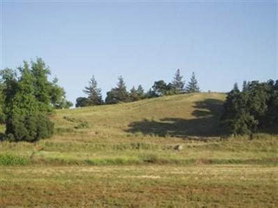 9  Fox Borough Drive, Oakdale, CA 95361 - MLS#: 11040438