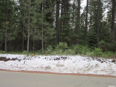 10088  Grizzly Flat Road, Grizzly Flats, CA 95636 - MLS#: 16011717