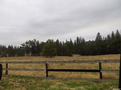 100  Loveland Lane, West Point, CA 95255 - MLS#: 17005325