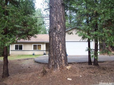 5164 Wooded Glen Road, Grizzly Flats, CA 95636 - MLS#: 17017805