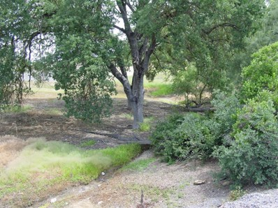 337  Saint Andrews Road, Valley Springs, CA 95252 - MLS#: 17027093